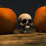 Transitions, Skulls, pumpkins and more