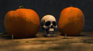 Transitions, Skulls, pumpkins and more