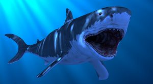 Great White Shark VFX